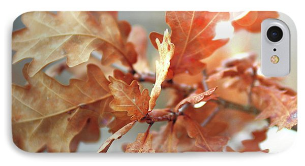 Oak Leaves In Autumn IPhone Case by Wilhelm Hufnagl