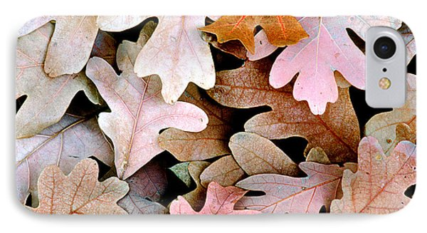Oak Leaves Photo IPhone Case by Peter J Sucy