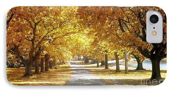 Oak Tree Avenue In Autumn IPhone Case