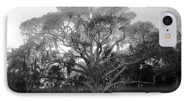 Oak Tree Phone Case by David Lee Thompson