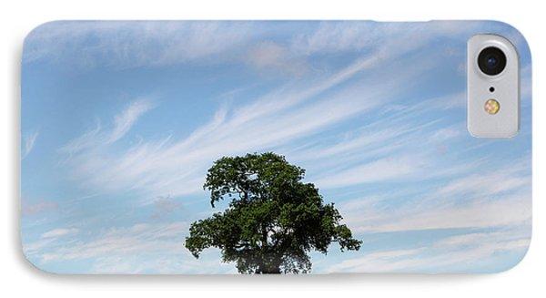 Oak Tree Landscape Phone Case by Steev Stamford