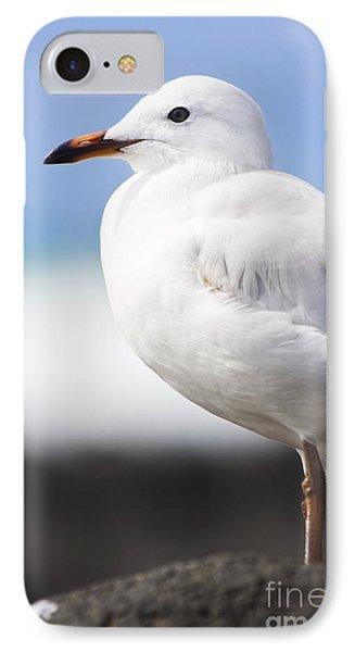 Ocean Bird IPhone Case by Jorgo Photography - Wall Art Gallery