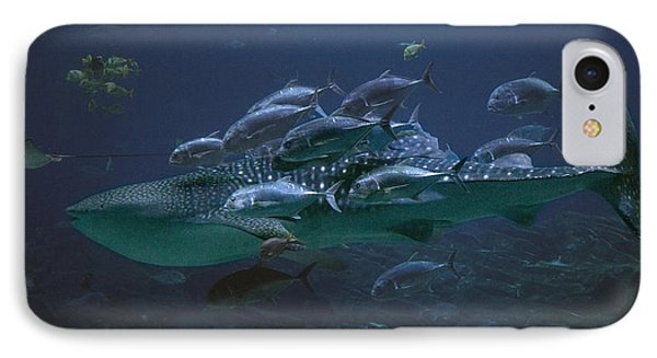 Ocean Treasures IPhone Case by Betsy Knapp
