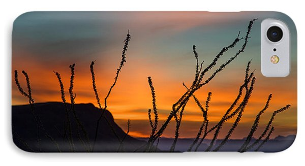 Ocotillo At Sunset IPhone Case