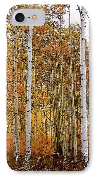 October Aspen Grove  IPhone Case