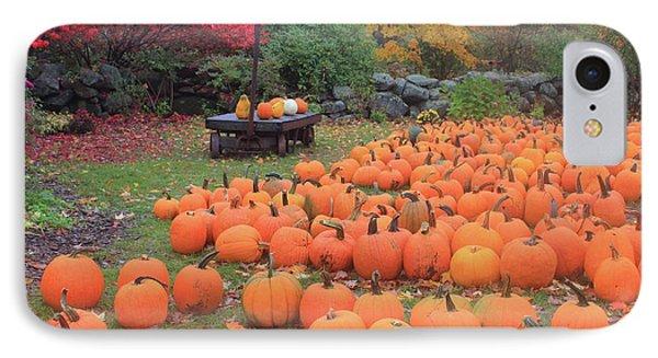 October Harvest IPhone Case by John Burk