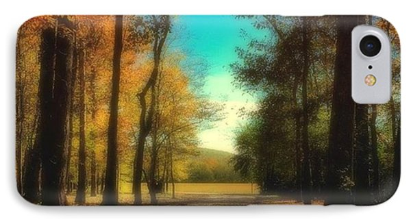 October Path IPhone Case by Steven Gordon