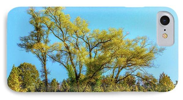 Sunlight iPhone 7 Case - October Tree by Tom Mc Nemar