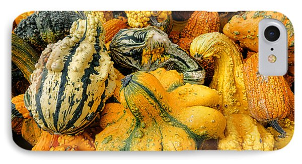 Odd Gourds Two IPhone Case by Olivier Le Queinec