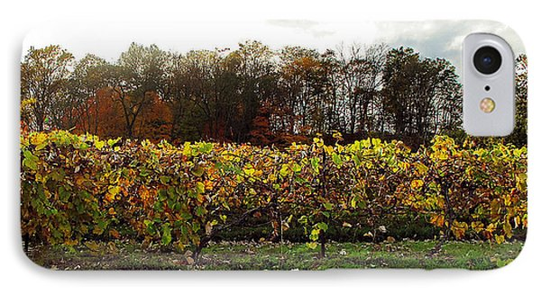 IPhone Case featuring the photograph Ohio Winery In Autumn by Joan  Minchak