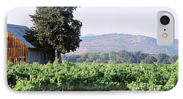 Old Barn In A Vineyard, Napa Valley IPhone Case by Panoramic Images