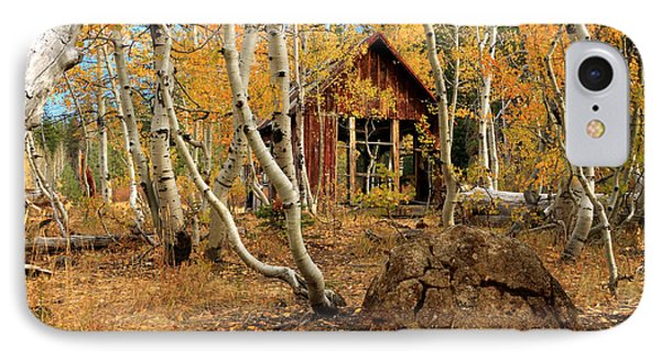 Old Cabin In The Aspens Phone Case by James Eddy