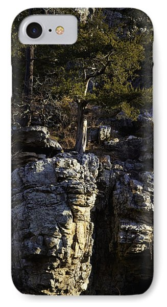 IPhone Case featuring the photograph Old Cedar Buffalo National River by Michael Dougherty