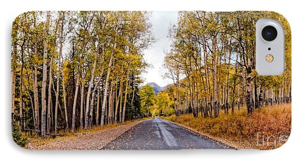 Old Fall River Road With Changing Aspens - Rocky Mountain National Park - Estes Park Colorado IPhone Case