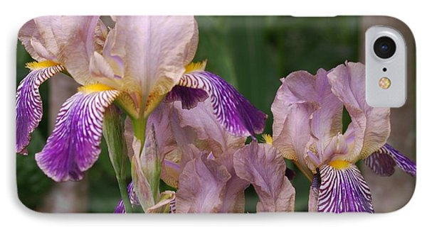 Old-fashioned Iris IPhone Case