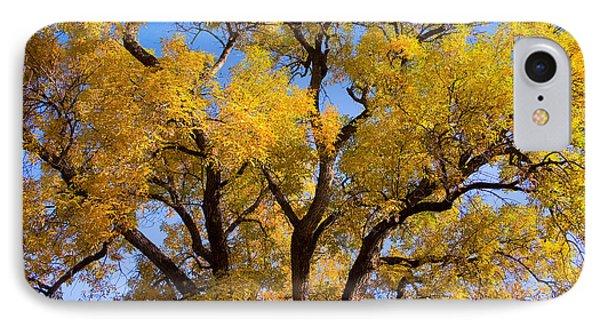 Old Giant  Autumn Cottonwood IPhone Case