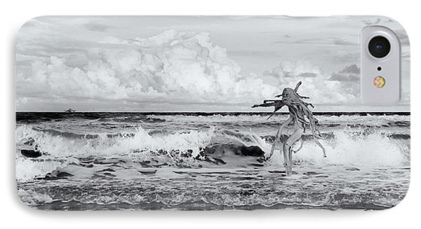 Old Man In The Sea IPhone Case by Carolyn Dalessandro