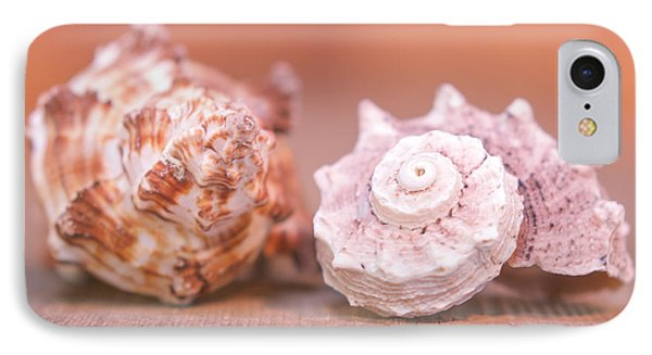 Shell Attractions IPhone Case by Heidi Hermes