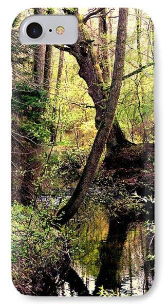 Old Oak IPhone Case by Henryk Gorecki