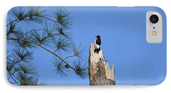 IPhone Case featuring the photograph Old Red by Skip Willits