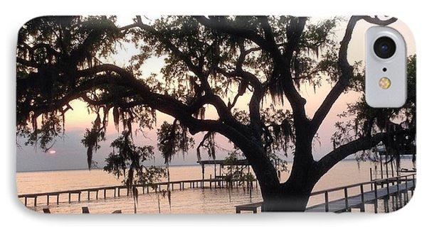Old Tree At The Dock IPhone Case by Christin Brodie