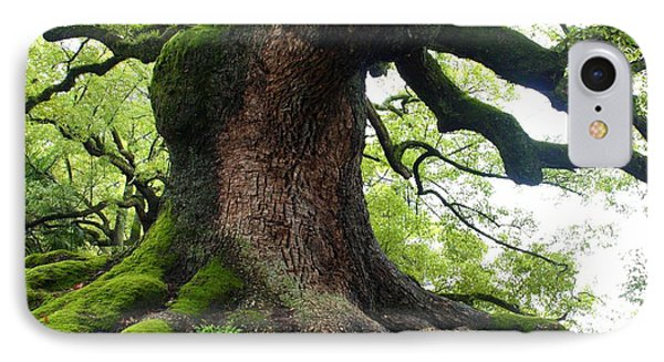 Old Tree In Kyoto Phone Case by Carol Groenen