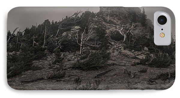 Old Tress Reaching Through The Fog Bw IPhone Case