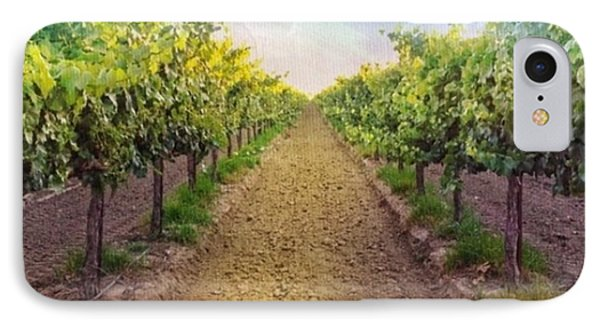 Old #vineyard Photo I Rescued From My IPhone Case by Shari Warren