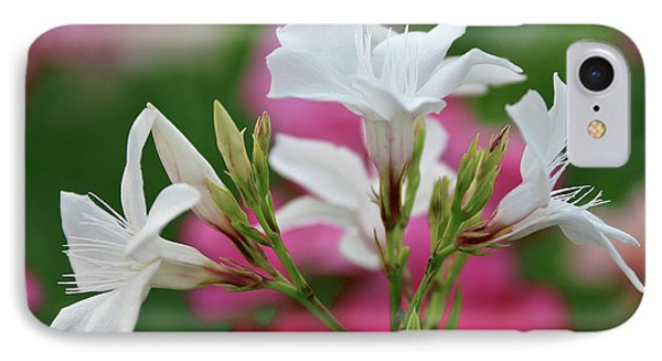 IPhone Case featuring the photograph Oleander Casablanca 1 by Wilhelm Hufnagl