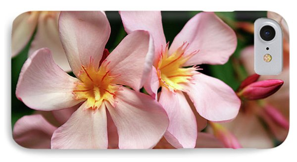IPhone Case featuring the photograph Oleander Dr. Ragioneri 2 by Wilhelm Hufnagl