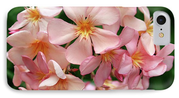 IPhone Case featuring the photograph Oleander Dr. Ragioneri 3 by Wilhelm Hufnagl