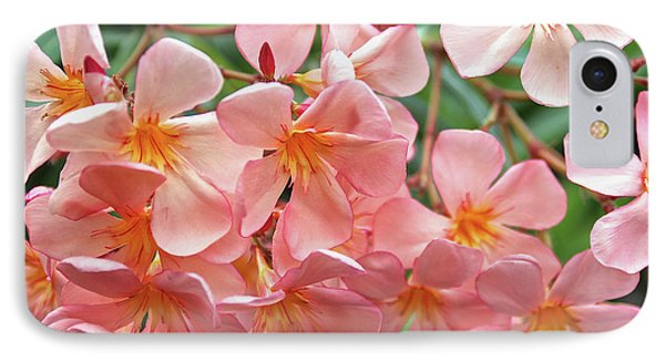 IPhone Case featuring the photograph Oleander Dr. Ragioneri 5 by Wilhelm Hufnagl