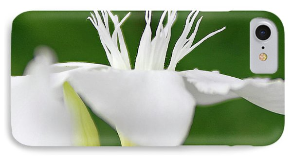 IPhone Case featuring the photograph Oleander Ed Barr 2 by Wilhelm Hufnagl