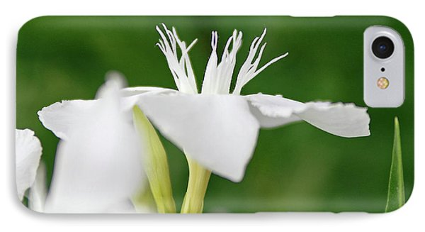 IPhone Case featuring the photograph Oleander Ed Barr 1 by Wilhelm Hufnagl