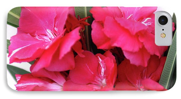 IPhone Case featuring the photograph Oleander Geant Des Batailles 1 by Wilhelm Hufnagl