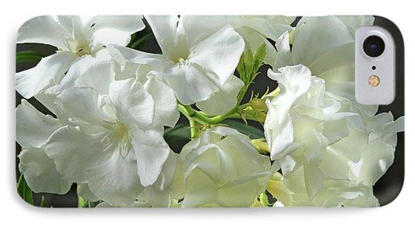 Oleander Mont Blanc 2 IPhone Case