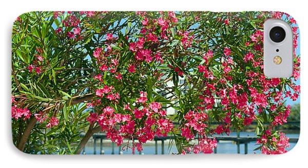 Oleander On Melbourne Harbor In Florida Phone Case by Allan  Hughes