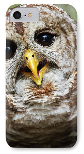 IPhone Case featuring the photograph Oliver Owl by Arthur Dodd