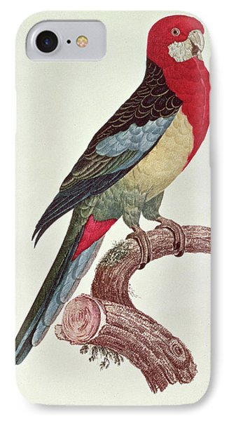 Parakeet iPhone 7 Case - Omnicolored Parakeet by Jacques Barraband