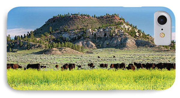 On A Field Of Yellow IPhone Case by Todd Klassy