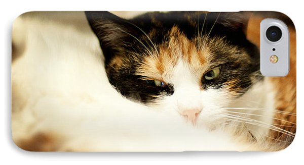 IPhone Case featuring the photograph On A Furry Pillow by Laura Melis