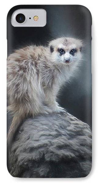 On Lookout IPhone Case by Anita Hubbard