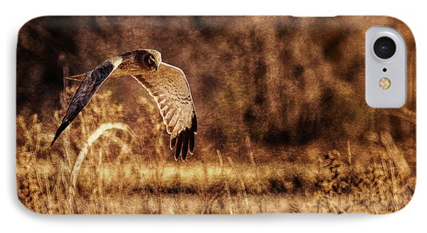 IPhone Case featuring the photograph On The Hunt by Annette Hugen