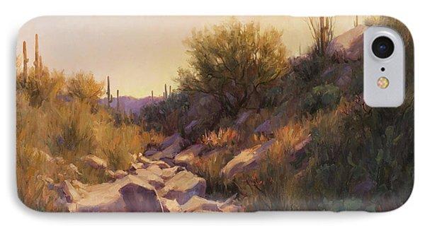 On The Rocks IPhone Case by Becky Joy