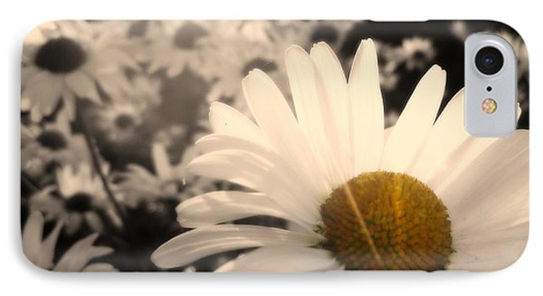 One Daisy Stands Out From The Bunch IPhone Case by Mark David Zahn