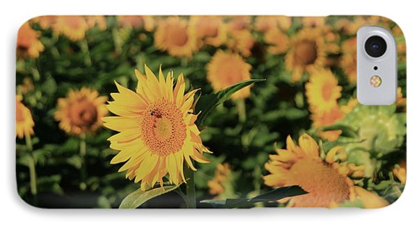 IPhone Case featuring the photograph One In A Million Sunflowers by Chris Berry
