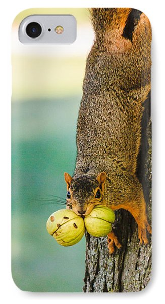 One Nut Is Never Enough IPhone Case by Joni Eskridge