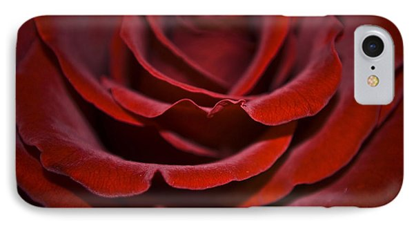 One Red Rose Phone Case by Svetlana Sewell