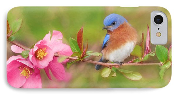 One Touch Of Nature IPhone Case by Lori Deiter
