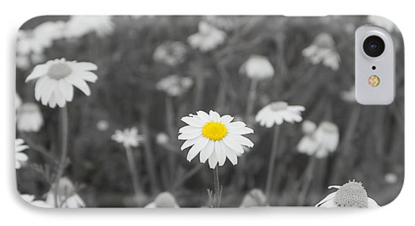 IPhone Case featuring the photograph Oopsy Daisy by Benanne Stiens